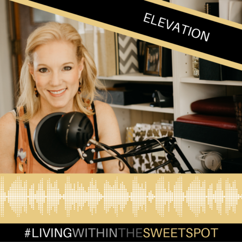 Elevation Life Coach
